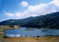 Naturalistic Sicily